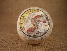 Smussata Caxigon