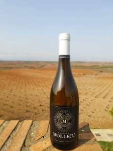 Vino Hacienda Molleda Blanco Joven