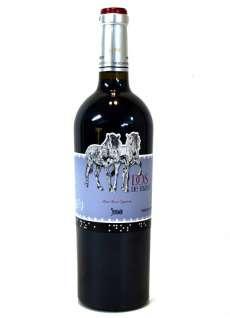 Vino rosso Dos de Mayo
