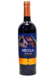 Vino rosso Hécula