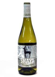 Vino Shaya